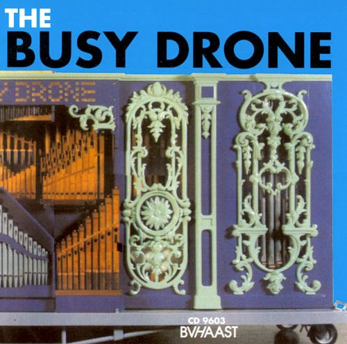 The Busy Drone