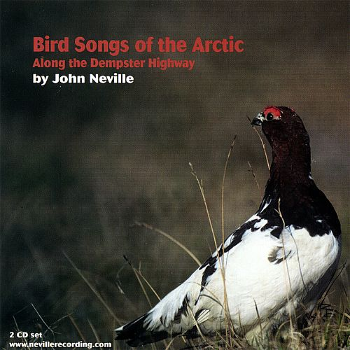 Bird Songs of the Arctic-Along the Dempster Highway