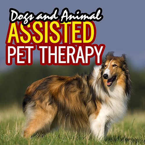 Dog and Animal Assisted Pet Therapy