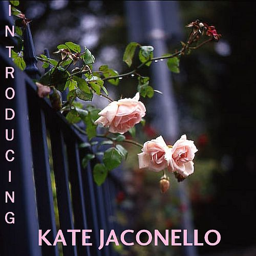 Introducing Kate Jaconello