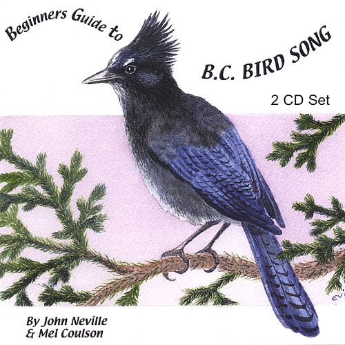 Beginners Guide to B.C. Bird Song
