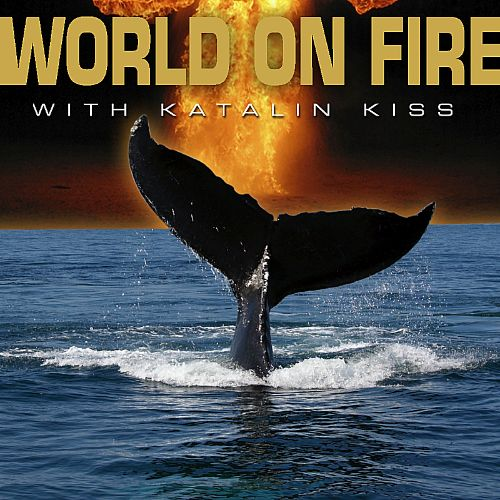 World on Fire with Katalin Kiss