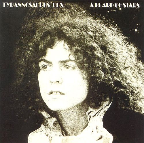 Electric Warrior Sessions [40th Anniversary Edition] - T. Rex ...