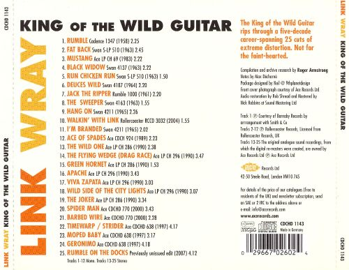 King of the Wild Guitar