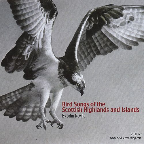 Bird Songs of the Scottish Highlands and Islands