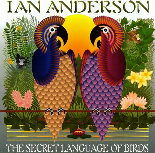 Image result for The Secret Language of Birds Ian Anderson pictures