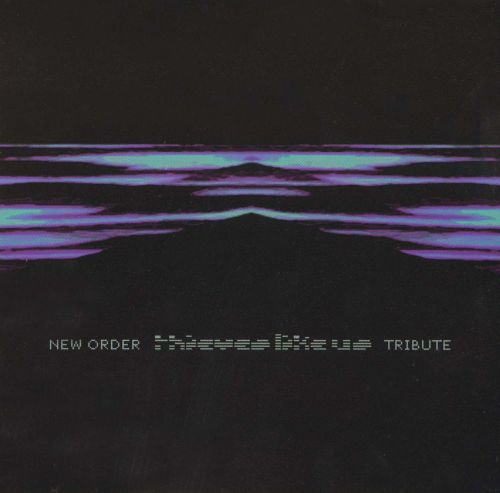 Thieves Like Us: New Order Tribute