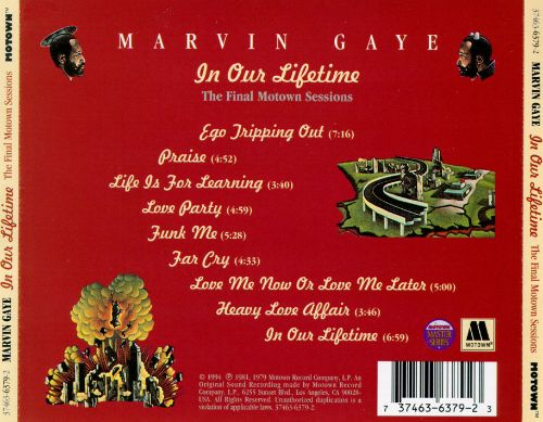 Marvin gaye in our lifetime