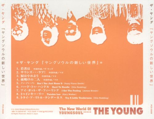 The New World Of Youngsoul