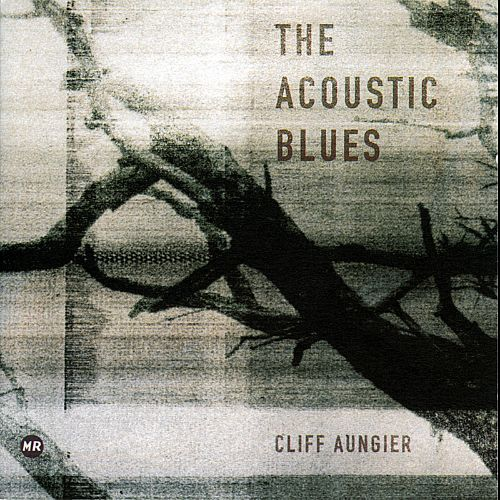 The Acoustic Blues