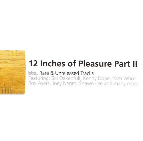 Twelve Inches of Pleasure: BBE Singles, Vol. 2