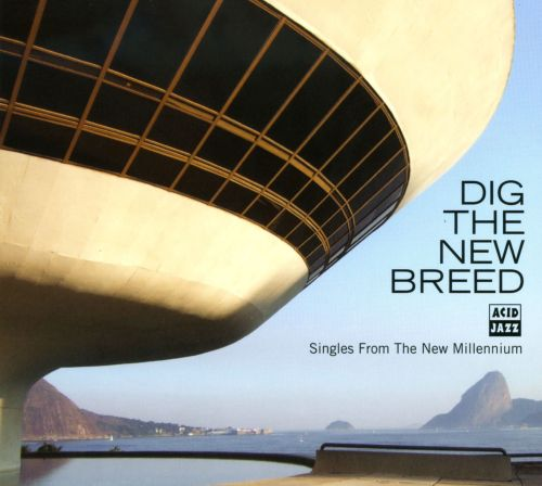 Dig the New Breed: Singles From the New Millennium
