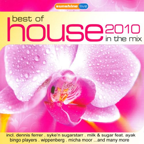 Best of House 2010: In the Mix