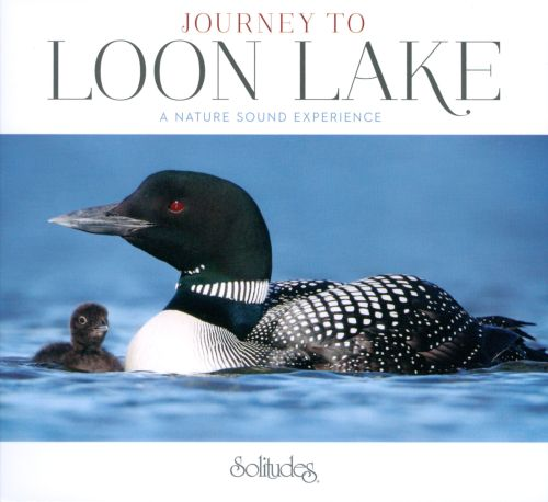 Journey To Loon Lake