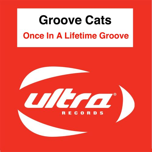 Once in a Lifetime Groove