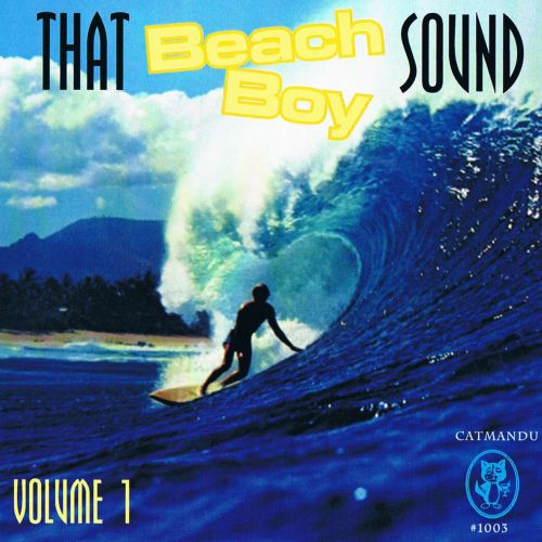That Beach Boy Sound, Vol. 1