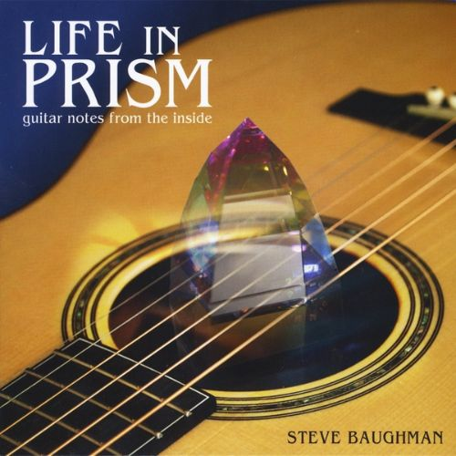 Life in Prism: Guitar Notes From the Inside