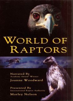 World of Raptors