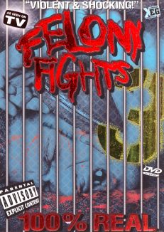 Best of Felony Fights #3: Caught on Tape
