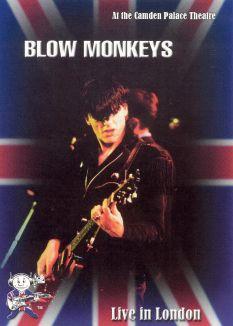 Blow Monkeys: Live in London