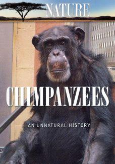Nature : Chimpanzees: An Unnatural History