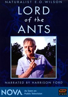 NOVA : Lord of the Ants