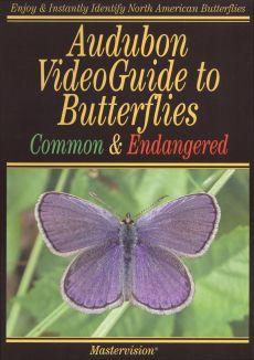 Audubon VideoGuide to Butterlfies Common & Endangered