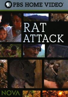 NOVA : Rat Attack