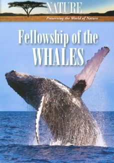 Nature : Fellowship of the Whales