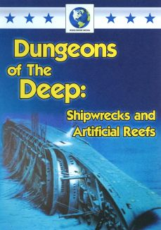 Dungeons of the Deep: Shipwrecks and Artificial Reefs