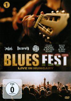 Blues Fest: Live at Hungary