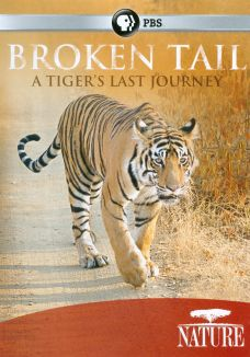 Nature : Broken Tail: A Tiger's Last Journey