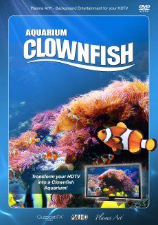Plasma Art: Aquarium Clownfish