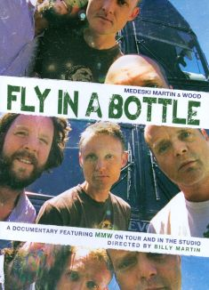 Medeski, Martin & Wood: Fly in a Bottle