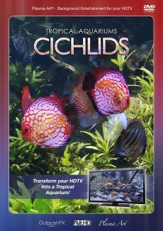 Plasma Art: Tropical Aquariums - Cichlids