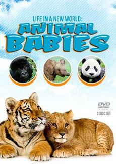 Life in a New World: Animal Babies