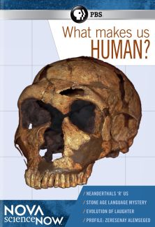 Nova scienceNow : What Makes Us Human?