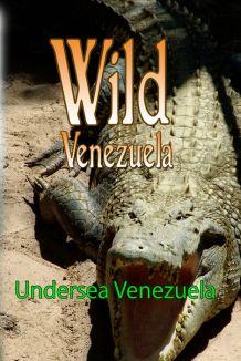 Wild Venezuela: Undersea Venezuela