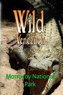 Wild Venezuela: Morrocoy National Park