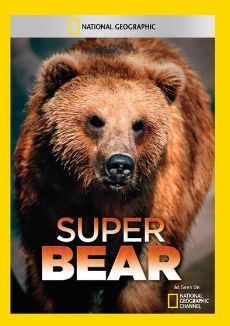 National Geographic: Super Bear