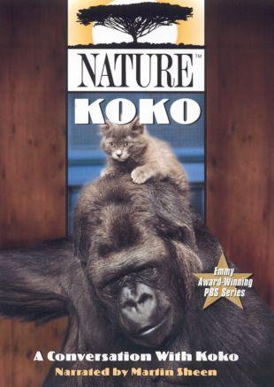 Nature : A Conversation With Koko