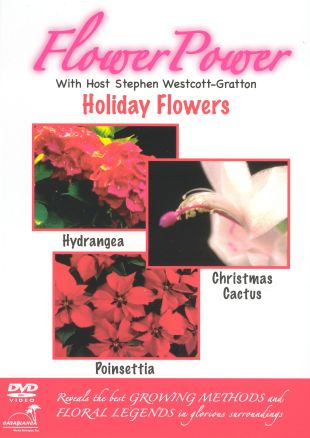 Flower Power: Holiday Flowers