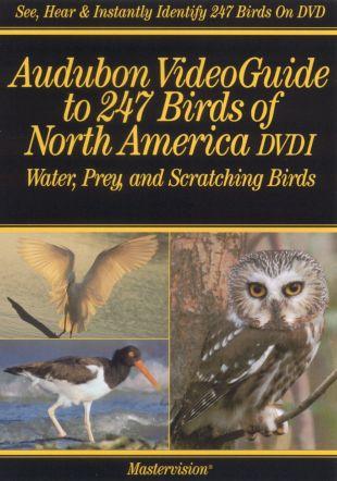 Audubon, Vol. 1: Video Guide to 247 Birds of North America