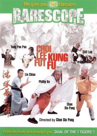 Choi Lee Fut Kung Fu