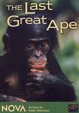 NOVA : The Last Great Ape