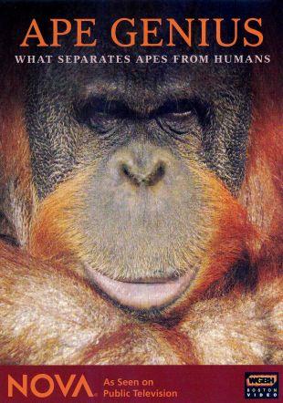 NOVA : Ape Genius