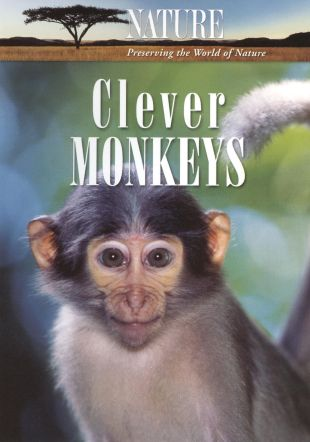 Nature : Clever Monkeys