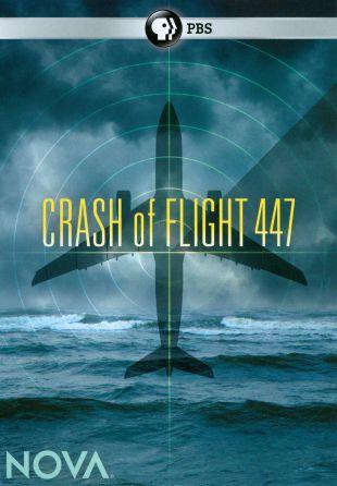 NOVA : Crash of Flight 447