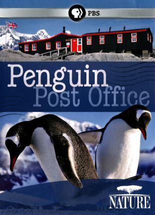 Nature : Penguin Post Office