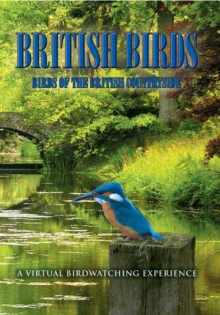 British Birds: Birds of the British Countryside